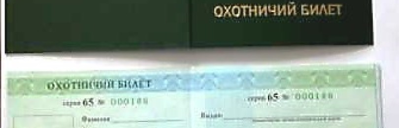 Как получить охотничий билет: порядок и сроки получения, советы