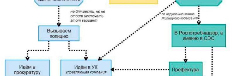 До скольки можно шуметь по закону в России: какой штраф за нарушение тишины?