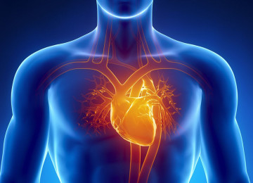 Дают ли инвалидность после инфаркта миокарда – характеристика 3 групп