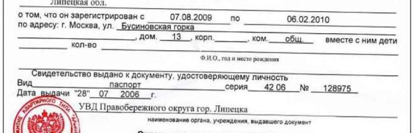 Как получить временную регистрацию через МФЦ: какие документы нужны, инструкция