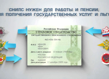 Как получить СНИЛС через: Госуслуги, ПФР, МФЦ, документы и сроки