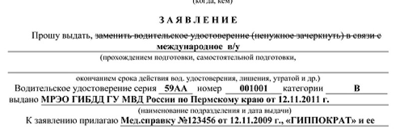 Порядок получения международных прав в МФЦ: документы, пошаговая инструкция, размер госпошлины