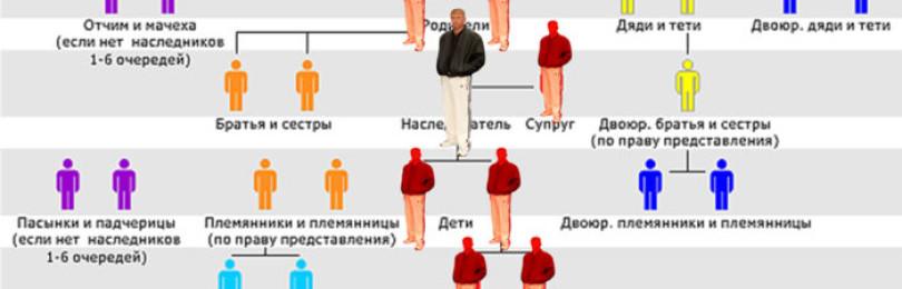 Раздел наследства, как делится наследство между наследниками