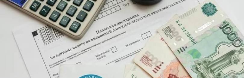 Услуги налоговых органов – через МФЦ: пошаговая инструкция